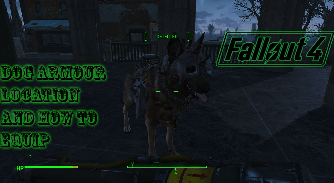 how to get dogmeat fallout 4