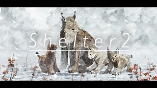 Shelter2-Симулятор рыси #Знакомство