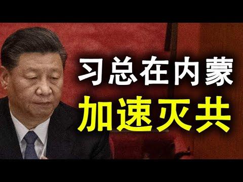 继新疆和香港之后,习近平又在内蒙和西藏加速;中共隐形的民族灭绝政策同时针对汉蒙回藏(政论天下第222集 20200831)天亮时分