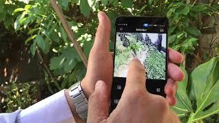 Vigilancia predio agrícola