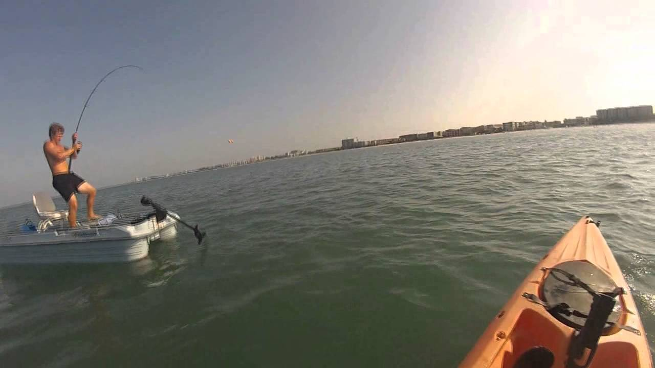 Tarpon fishing in siesta key fl youtube for Siesta key fishing report