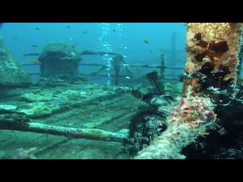 Maldives  diving paradise full documentary