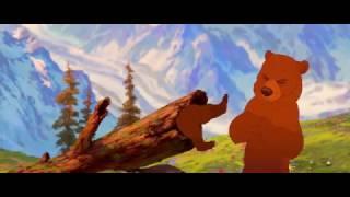 O pé na Estrada eu Vou Botar- Irmão Urso