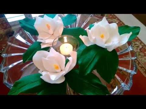 Цветок магнолия - flowers-to-