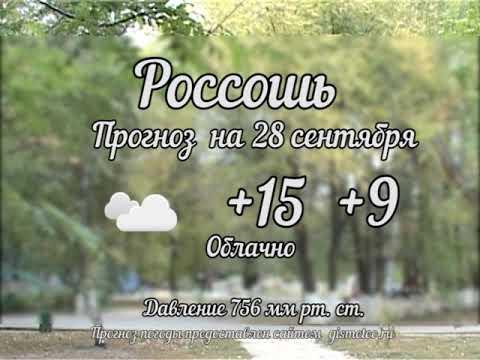 Прогноз погоды на 28.09.2019, Блокнот Россоши
