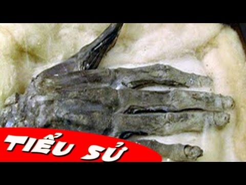 Tiểu sử Ghê rợn bàn tay quyền lực thần thánh tái xuất giang hồ