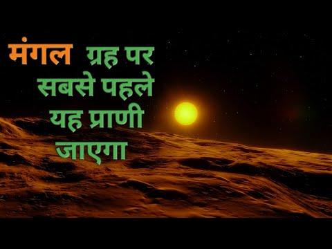 मंगल ग्रह पर इस प्राणी को पहले भेजा जाएगा | mars planet life mission in Hindi