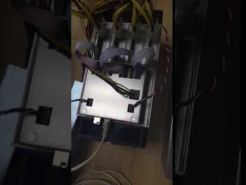 Dayun Zig Z1 6 Gh/s