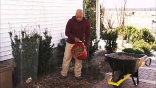 Preparing a Garden for Winter