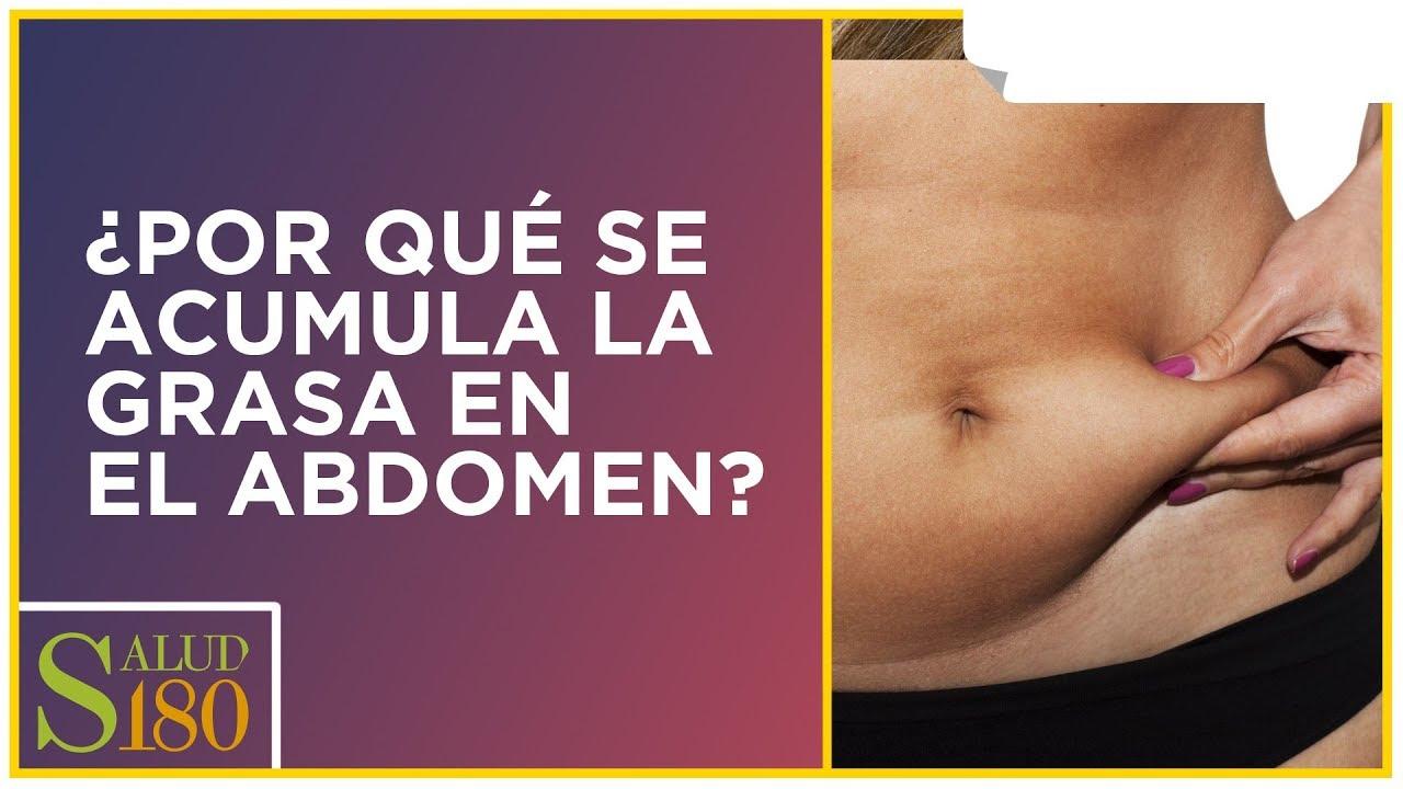 ¿por qué mi grasa del bajo vientre?
