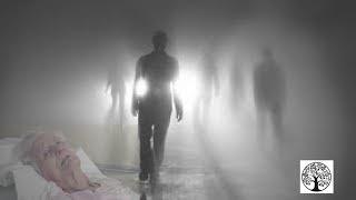 ¿POR QUÉ ANTES DE MORIR VEMOS FAMILIARES MUERTOS? LA VERDAD