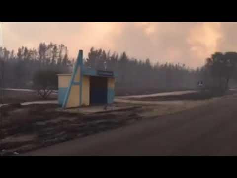 CXID.info: Пожар. Смоляниново. Северодонецк. Волчье часть #7 - Очевидец2