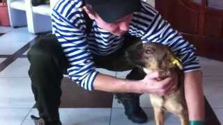 Новый Жорик Вартанов (охранник напрягает собаку)
