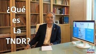 ¿Qué es la TNDR?