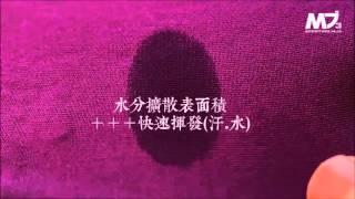 YouTube 影片