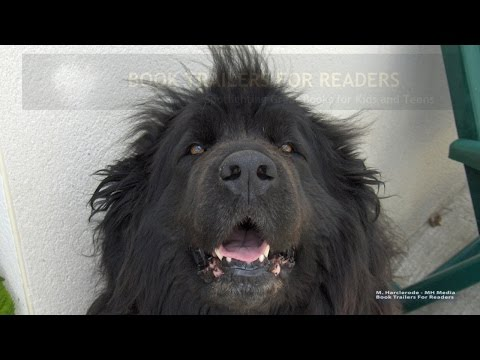 Elvis and the Underdogs Book Trailer