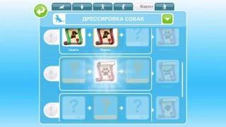 """Парк животных в The Sims FreePlay. """"Выставка кошек"""",  """"Дрессировка собак"""",  """"Соревнования для собак"""""""