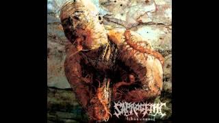 Saprogenic - Ichneumonid (FULL ALBUM HD)
