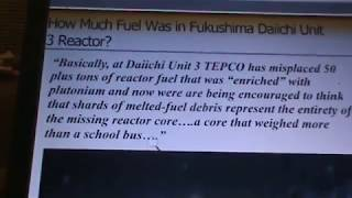 FUKUSHIMA: HOW MUCH FUEL WAS IN REACTOR 3? WOW
