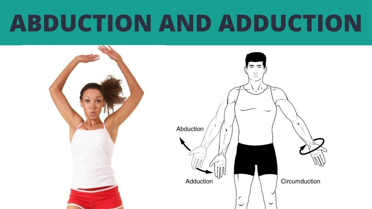 Abduction and Adduction - TERMINOLOGY #4 - YouTube