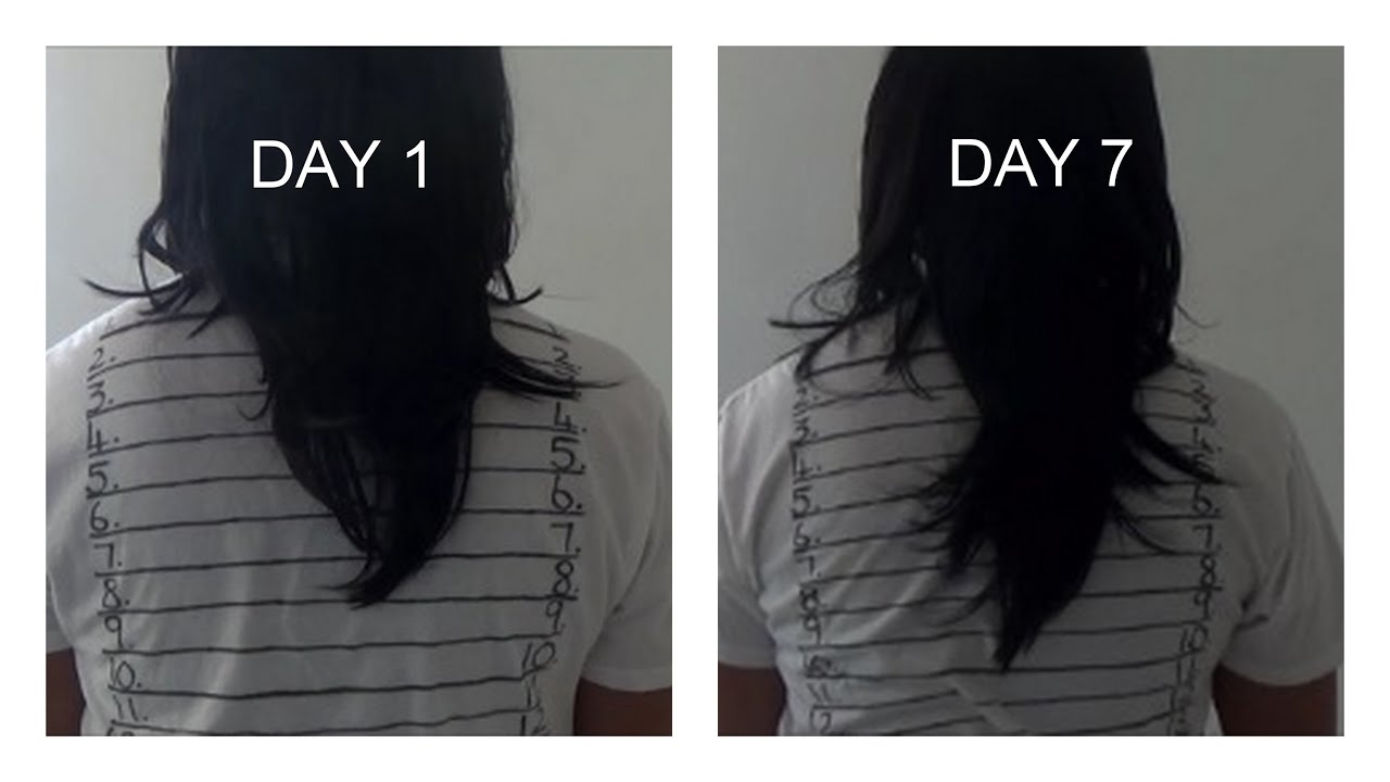 HOW TO GROW YOUR HAIR 1 2 INCHES IN A WEEK YouTube