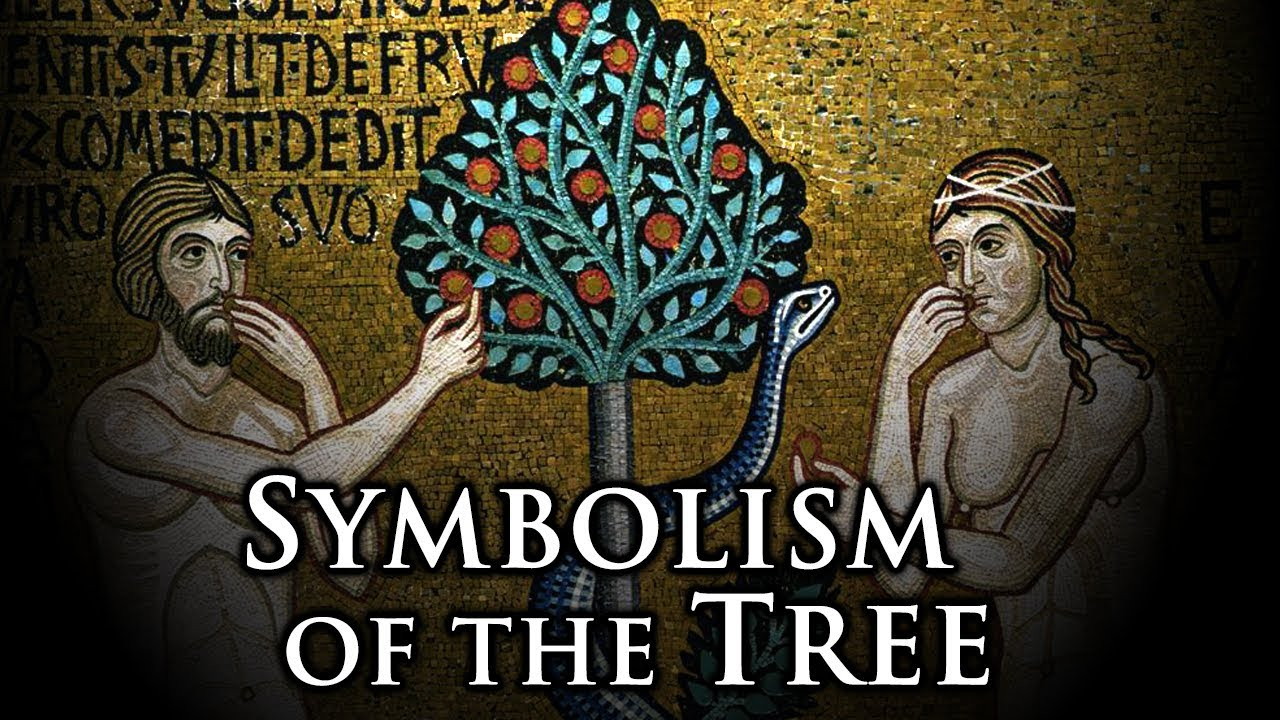 Symbolism of the tree youtube symbolism of the tree buycottarizona