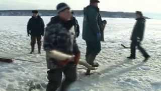 Трагедия на тонком льду