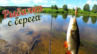 Рыбалка с берега на малой реке. Щука, Голавль, Окунь