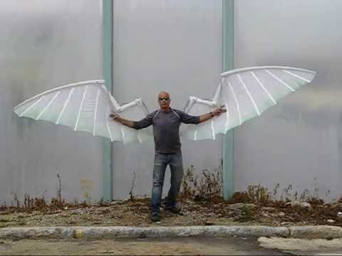 Image result for human sized wings