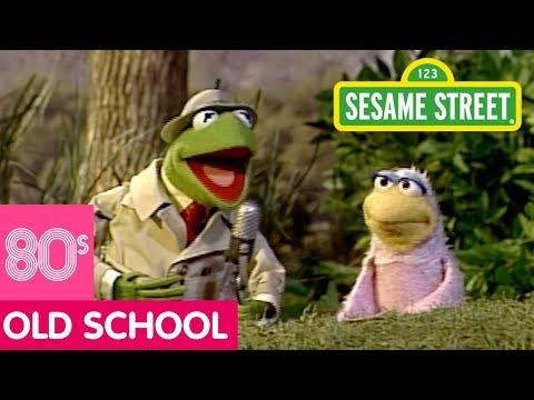 Sesame Street: The Bird Family Song | Kermit News - YouTube