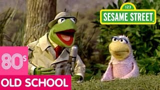 Sesame Street: The Bird Family Song | Kermit News