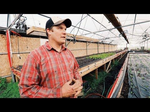 Rookie (Alaskan) Farmers: FAILS   WINS