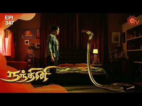 Nandhini - நந்தினி   Episode 347   Sun TV Serial   Super Hit Tamil Serial