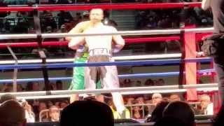 Roy Jones Jr. vs Willie Williams