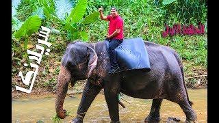 الحلقة الأولى من رحلة سريلانكا ( ١ )Sri Lanka trip