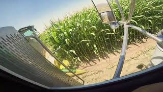 Peterbilt 379, John Deere 7480, Corn Silage, Loading(1/2)