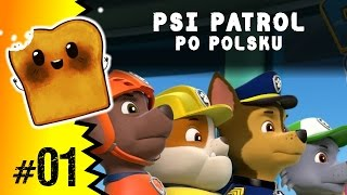 Psi Patrol Po Polsku | PAW Patrol: Rescue Run HD | Nickelodeon