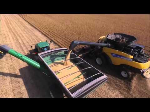 Soybean Harvest 2015 Iowa