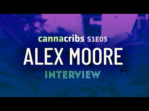 Humboldt Cannabis - Honeydew Farms Alex Moore Interview