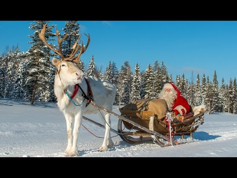 Pello - Santa Claus' reindeer land in Lapland. Father Christmas in winter Finland