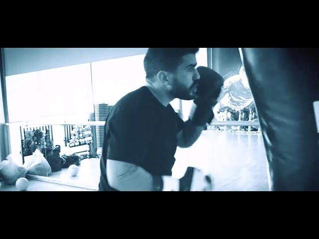 Ultimate Boxing Project - Digital Realism Studios