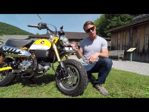 2019 Honda Monkey - First Look Review