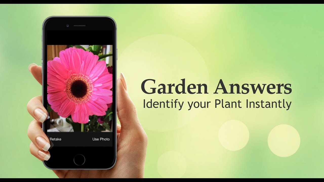 My Garden Answers Identify Your Plant Instantly YouTube