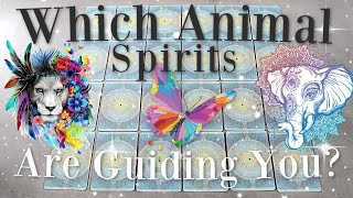 Who Are Your Animal Spirit Guides? 🔮(PICK A CARD) 🔮