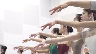新国立劇場バレエ団による2018年5月バレエ公演「白鳥の湖」のリハーサル...