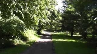 Galloway House Garden walks in July