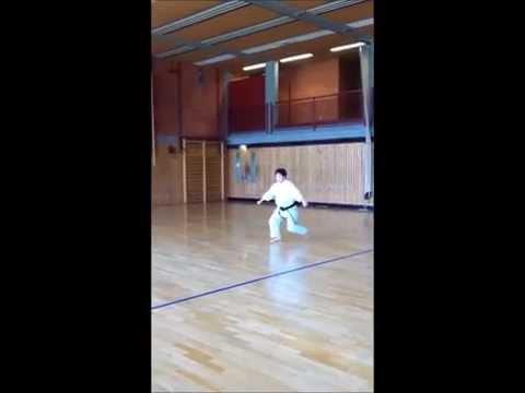 Kata Jion 13 Juli 2013 Shotokan Karate Phong Nguyen (TSC-Eintracht- Dortmund )