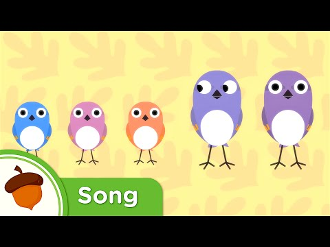 Hello Little Baby Sparrows | Original Kids Song from Treetop Family