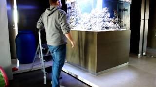 Морской аквариум. Аквариумная компания