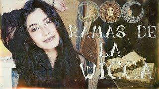 Las RAMAS de LA WICCA: WICCA CELTA, WICCA SAJONA... || Religión de BRUJAS || witchysoffie